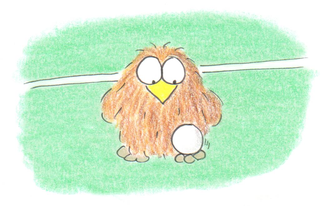 niki owl soccer