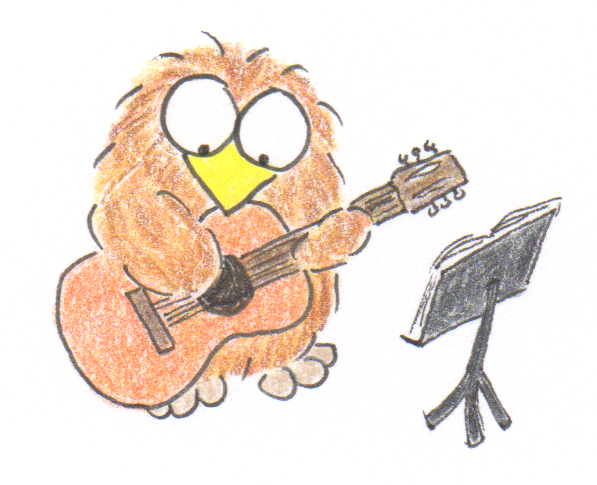 Niki Owl Spanish Guitar