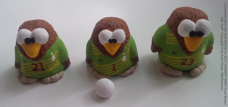 canwnt goalkeeper niki owls