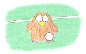 niki owl soccer 2